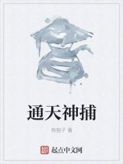 通天神捕热门推荐小说
